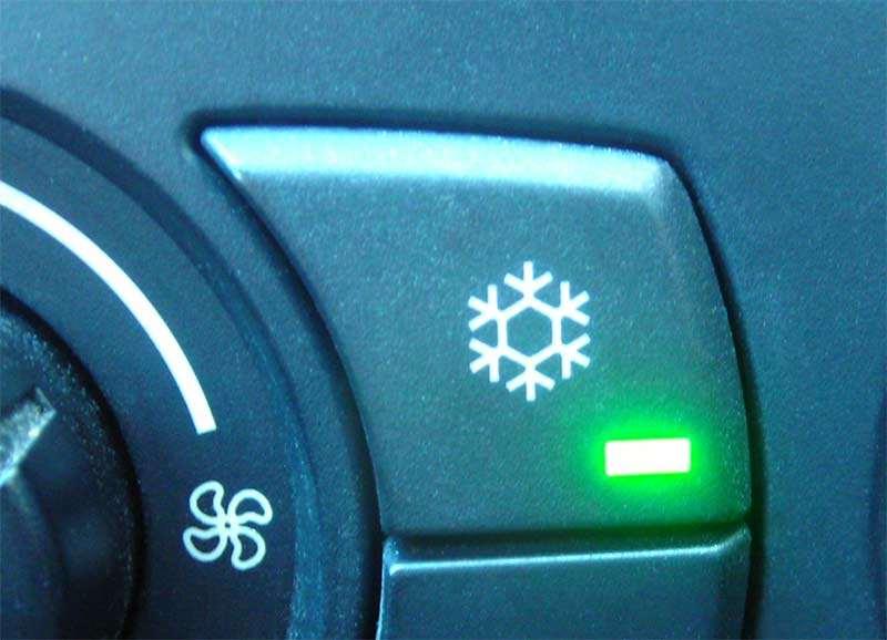Frostschutz vielen zuviel Arbeit